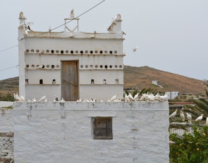 Cycladic Island Birdhouses of Tinos
