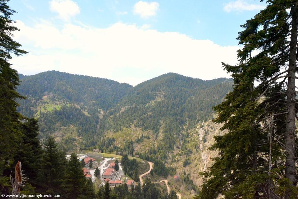 the montanema handmade village is tucked in teh woods