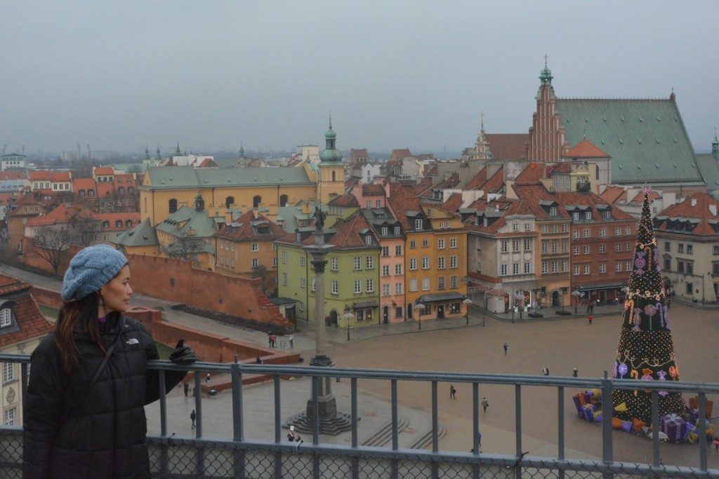 View from an old tower in Warsaw.