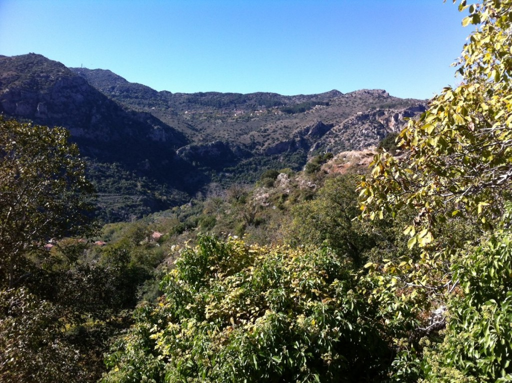 Top things to do in Dimitsana