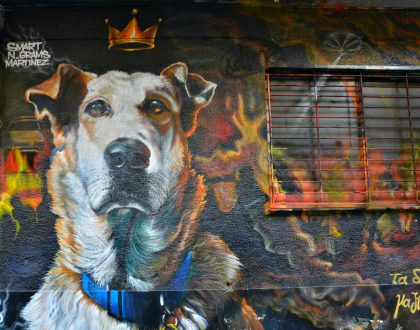 Alternative Athens Street Art Tour